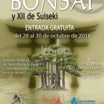 exposicion-bonsai-suiseki