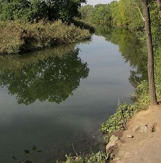 La Naturaleza en Alcalá de Henares