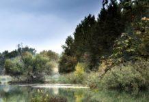 El río Henares