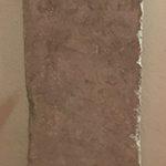 En cuanto a Ligurius Primitivus, evidentemente no se sabe quien fue, aunque, debido a la rareza del nombre Ligurus en Hispania, es posible que fuera un «liberto», liberado de las obligaciones hacia su antiguo señor. ¿Fue esa la razón razón de la dedicación del altar al dios Marte? No lo sabremos nunca, aunque puede que este altar fuera la expresión de la alegría ante la libertad.