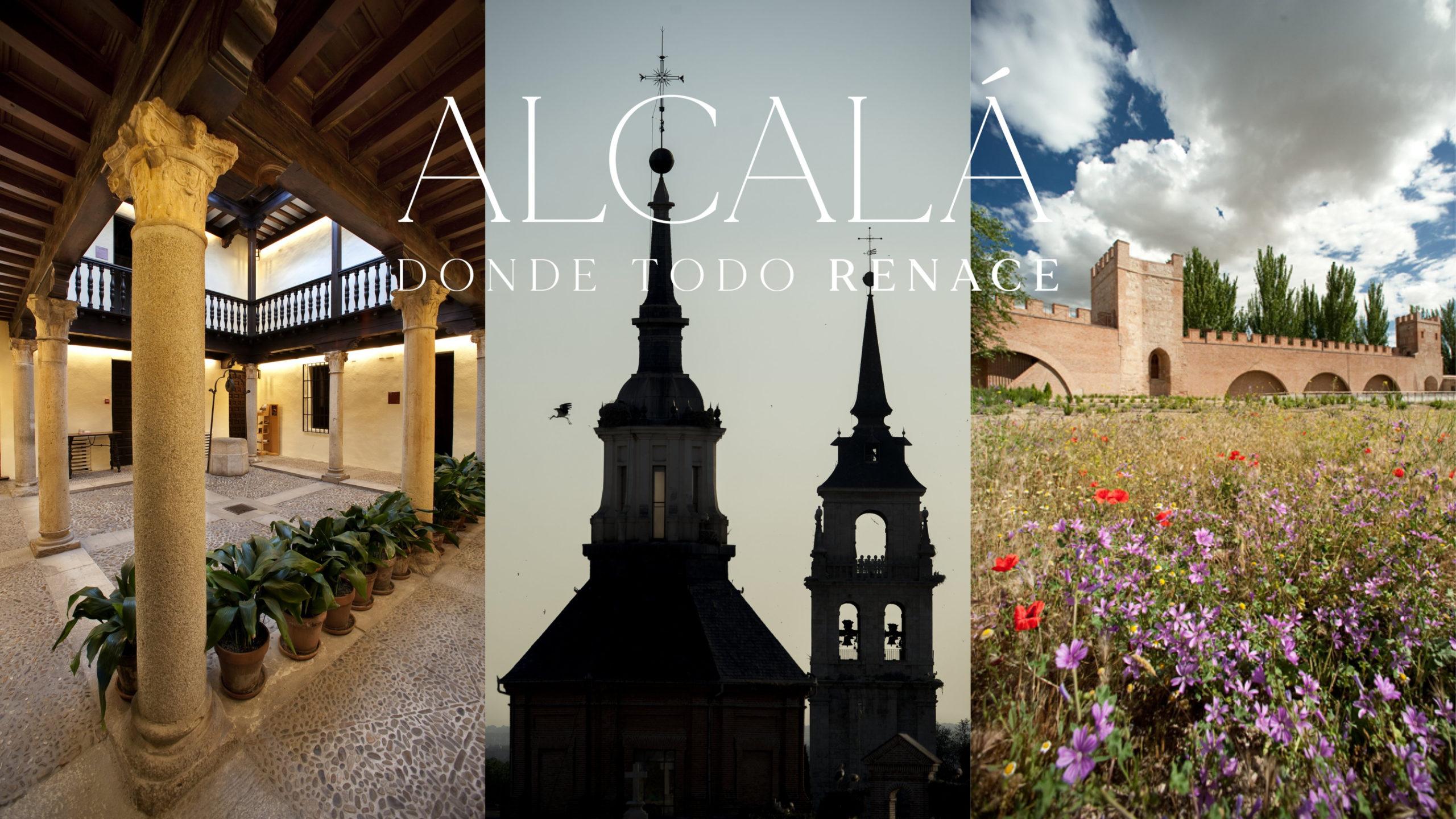 """Visita """"Alcalá literaria"""" I y II, Alcalá de Henares"""